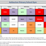 Ashburton Primary School Gym